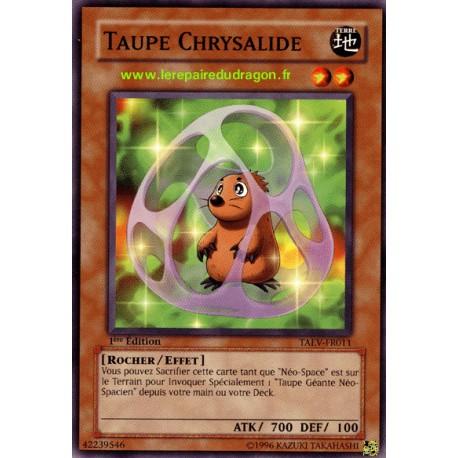 Taupe chrysalide (C)