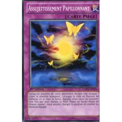 Assujettissement Papillonnant (C) [GAOV]