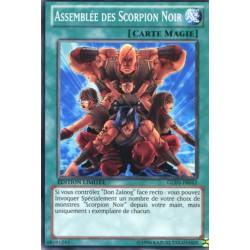Assemblée des Scorpion Noir (C) [GOLD5]