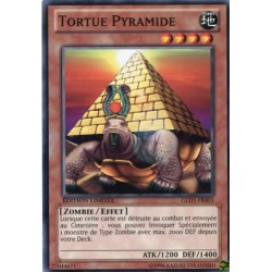 Tortue Pyramide (C) [GOLD5]