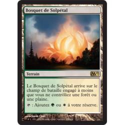 Terrain - Bosquet de Solpétal (R) [M13]