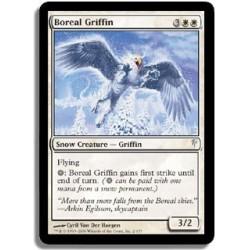 Blanche - Griffon de Boréal (C) [SGVF]