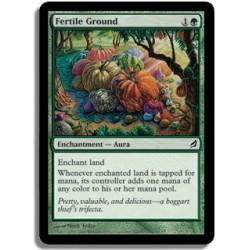 Verte - Terrain fertile (C)