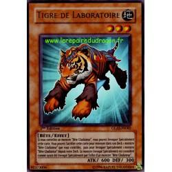 Tigre de Laboratoire (UR)