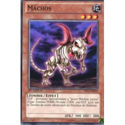 Mâchos (C) [SP13]
