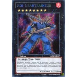 Roi Géantraîneur (STR) [NUMH]