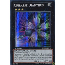 Cuirassé Dianthus (SR) [NUMH]