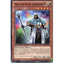 Magicien Blanc Expérimenté (C) [YSYR]