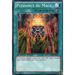Puissance du Mage (C) [YSYR]
