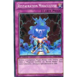 Restauration Miraculeuse (C) [YSYR]