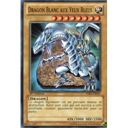 Dragon Blanc aux Yeux Bleus (C) [YSKR]