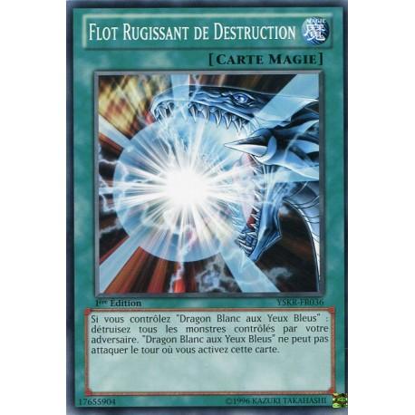Flot Rugissant de Destruction (C) [YSKR]