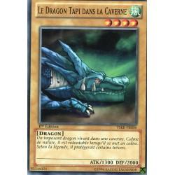 Le Dragon Tapi dans la Caverne (C) [YSKR]