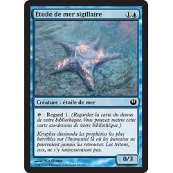 Bleue - Étoile de mer sigillaire (C) [JOU]