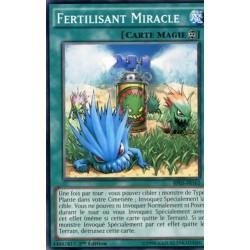 Fertilisant Miracle  (C) [BP03]