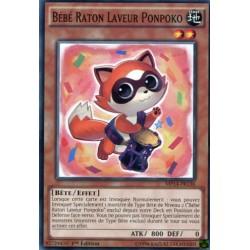 Bébé Raton Laveur Ponpoko (C) [MP14]