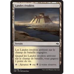Terrain - Landes érodées (C) (FOIL) [FRF]