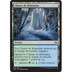 Terrain - Chutes de Boisépine (C) (FOIL) [FRF]