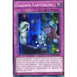 Chagrin Fantôruse (SR) [WSUP]