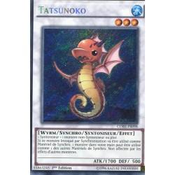 Tatsunoko (STR) [CORE]