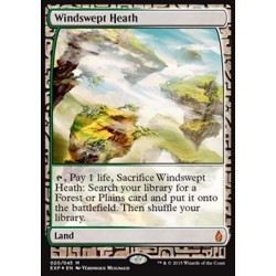 Terrain - Zendikar Expeditions Windswept Heath (FOIL)