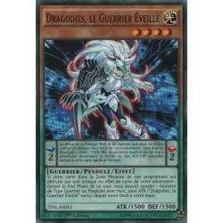 Yugioh - Dragodies, Le Guerrier Eveillé (C) [TDIL]