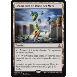 Terrain - Décombres de Porte des Mers (R) [OGW] FOIL