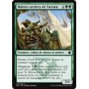Verte - Maîtres archers de l'aérain (C) [DTK] FOIL