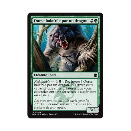 Verte - Ourse balafrée par un dragon (C) [DTK] FOIL