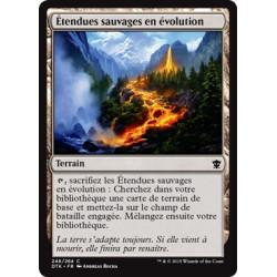 Terrain - Etendues Sauvages en Evolution (C) [DTK] FOIL