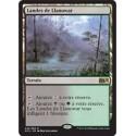 Terrain - Landes de Llanowar (R) [M15] FOIL