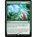 Verte - Les rêves les plus fous (R) [KLD]