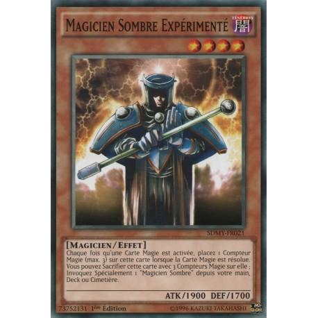 Magicien Sombre Expérimenté (C) [SDMY]
