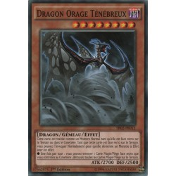 Dragon Orage Ténébreux (C) [SR02]