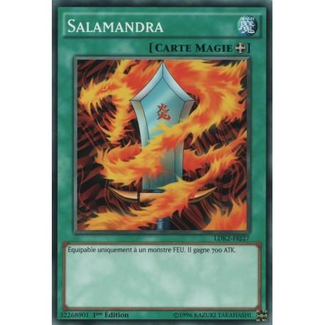 Salamandra (C) [LDK2]