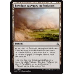 Terrain - Etendues sauvages en évolution (C) [AKH]