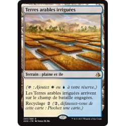 Terrain - Terres arables irriguées (R) [AKH]