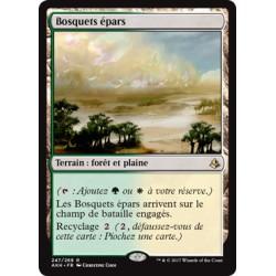 Terrain - Bosquets épars (R) [AKH]