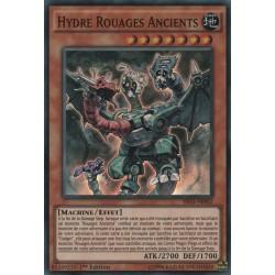 Hydre Rouages Ancients  (C) [SR03]
