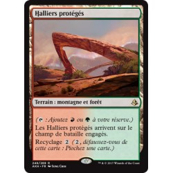 Terrain - Halliers protégés (R) [AKH] FOIL