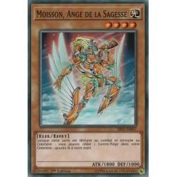Yugioh - Moisson, Ange De La Sagesse (C) [SR05]