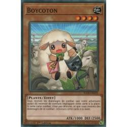 Yugioh - Boycoton (SP) [FLOD]