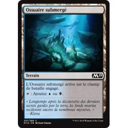 Terrain - Ossuaire submergé (C) [M19]