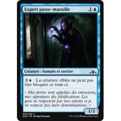 Bleue - Expert passe-muraille (C) [GRN] FOIL