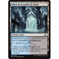 Terrain - Porte de la guilde de Dimir (B) (C) [GRN] FOIL