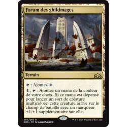 Terrain - Forum des ghildmages (R) [GRN] FOIL