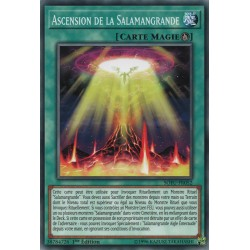 Yugioh - Ascension de la Salamangrande (C) [SOFU]