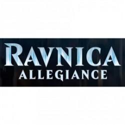 Boite Ravnica Allegiance (36 boosters) (25/01/19)