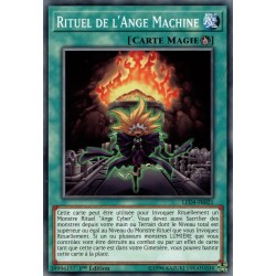 Yugioh - Rituel de l'Ange Machine (C) [LED4]