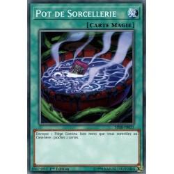 Yugioh - Pot de Sorcellerie (C) [SDSB]